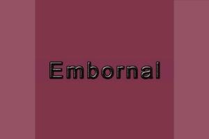 EMBORNAL Embornal