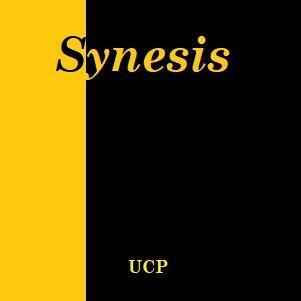 Synesis e1606352455178