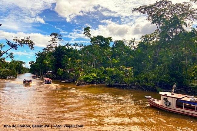 Ilha do Combu Belem Para Pan-Amazônia